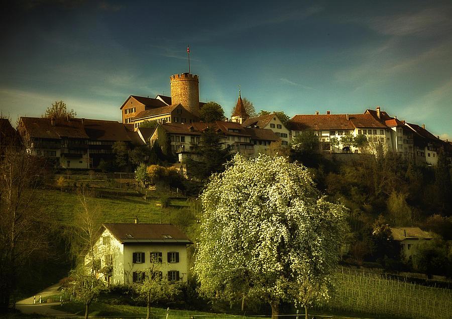 Spring Photograph - Spring by Svetlana Peric