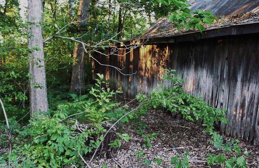 Barn Photograph - Still Standing by Anna Villarreal Garbis