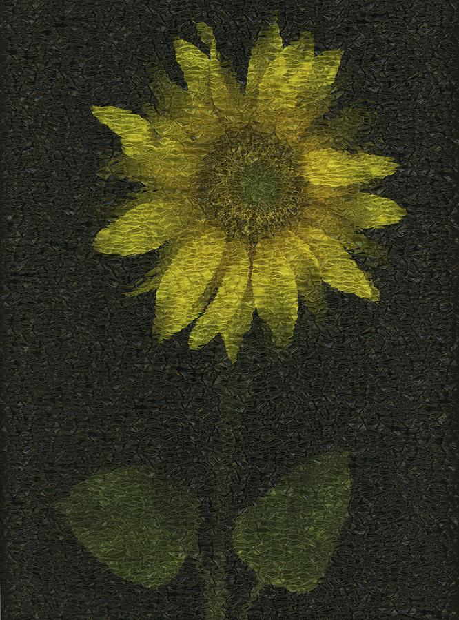 Artwork And Painting Photograph - Sunflower by Deddeda