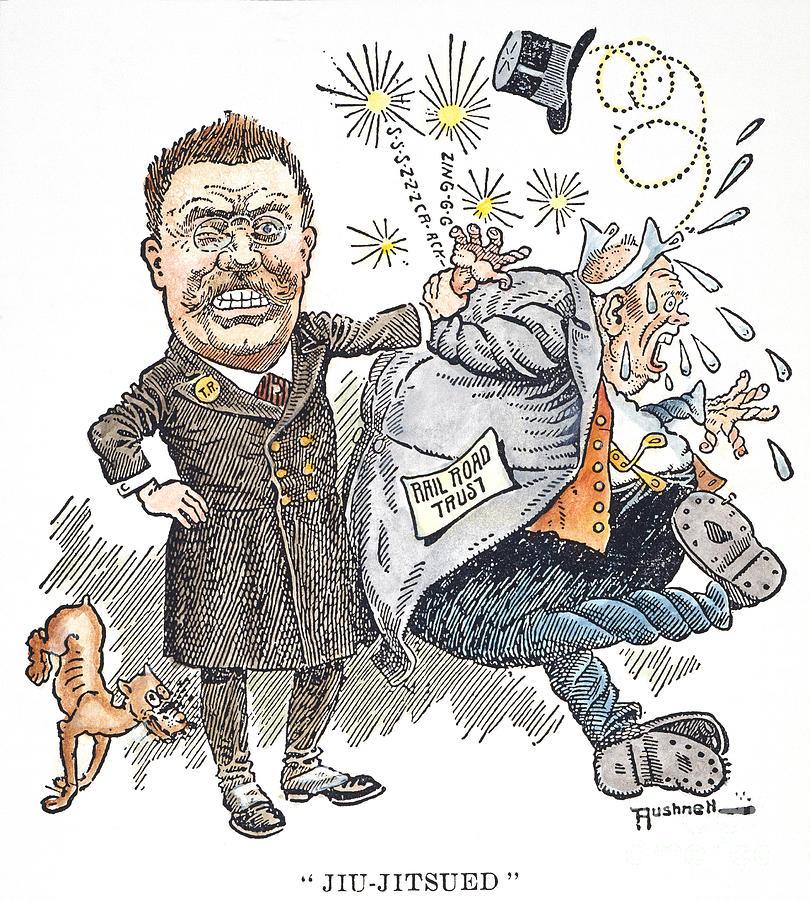 1906 Photograph - T. Roosevelt Cartoon by Granger