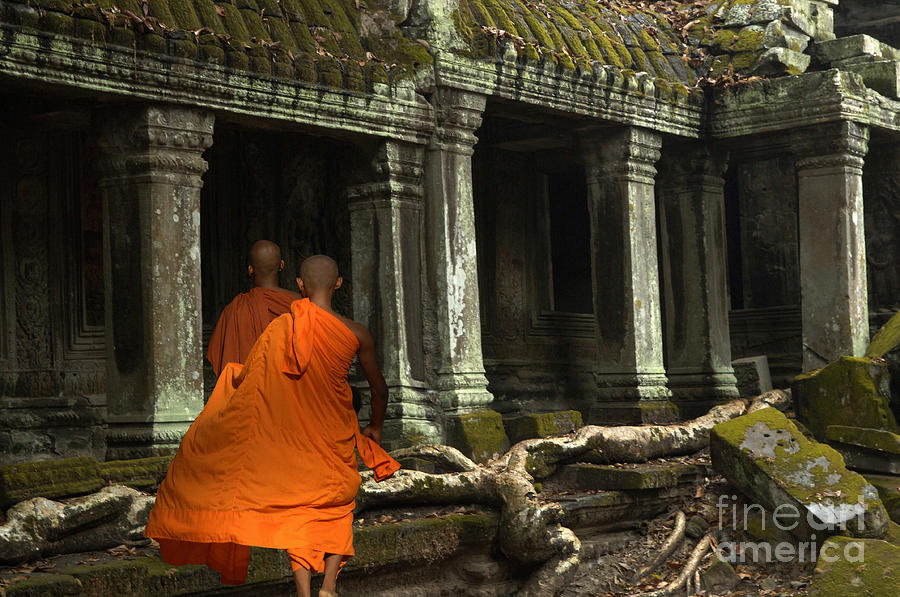 Travel Photograph - Ta Prohm Cambodia by Bob Christopher
