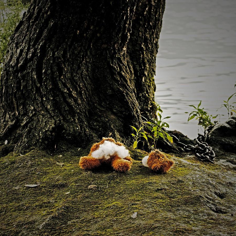 Teddy Photograph - Teddy Without Head by Joana Kruse