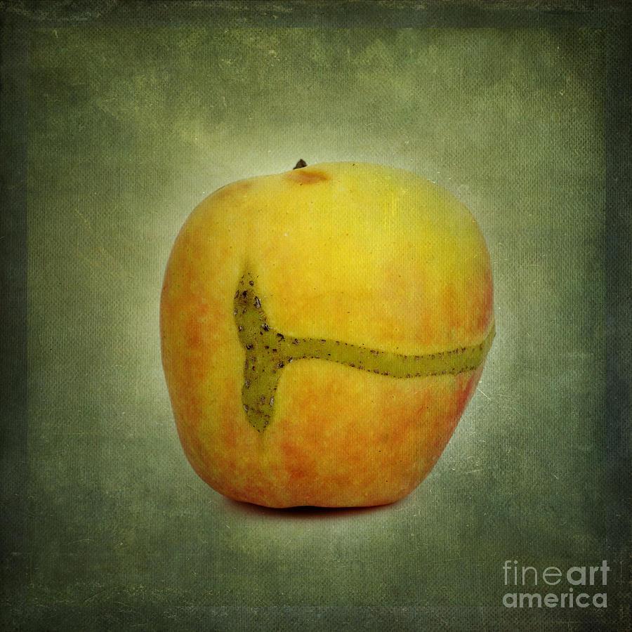 Texture Photograph - Textured Apple by Bernard Jaubert