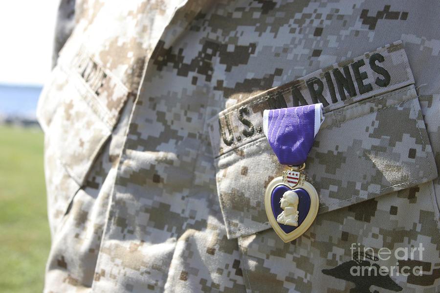 Us Marines Photograph - The Purple Heart Award Hangs by Stocktrek Images