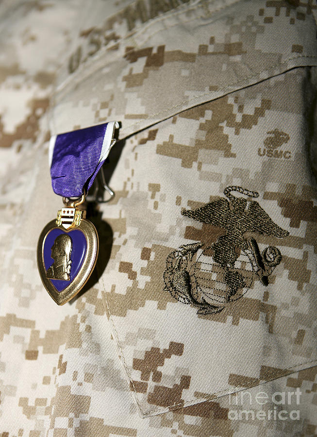Camouflage Photograph - The Purple Heart Award by Stocktrek Images