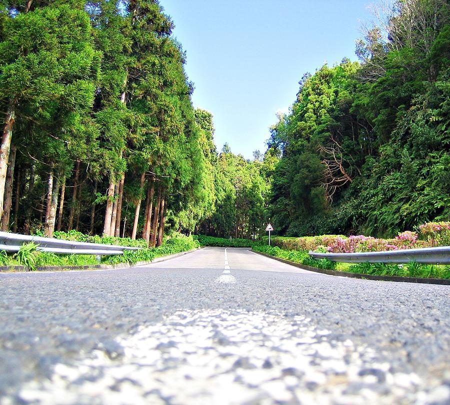 Photograph - The Road by Jenny Senra Pampin