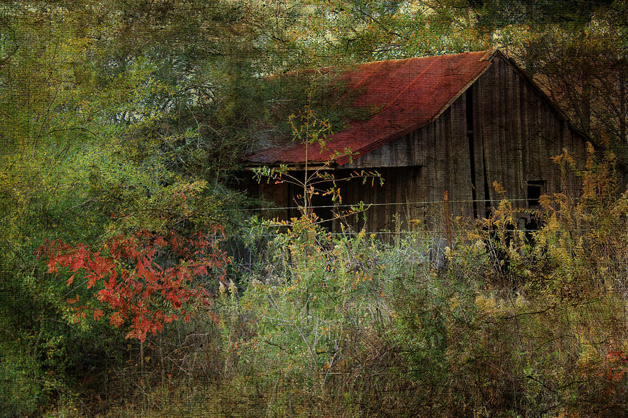 Rustic Digital Art - The Shed by Dianna Hauf