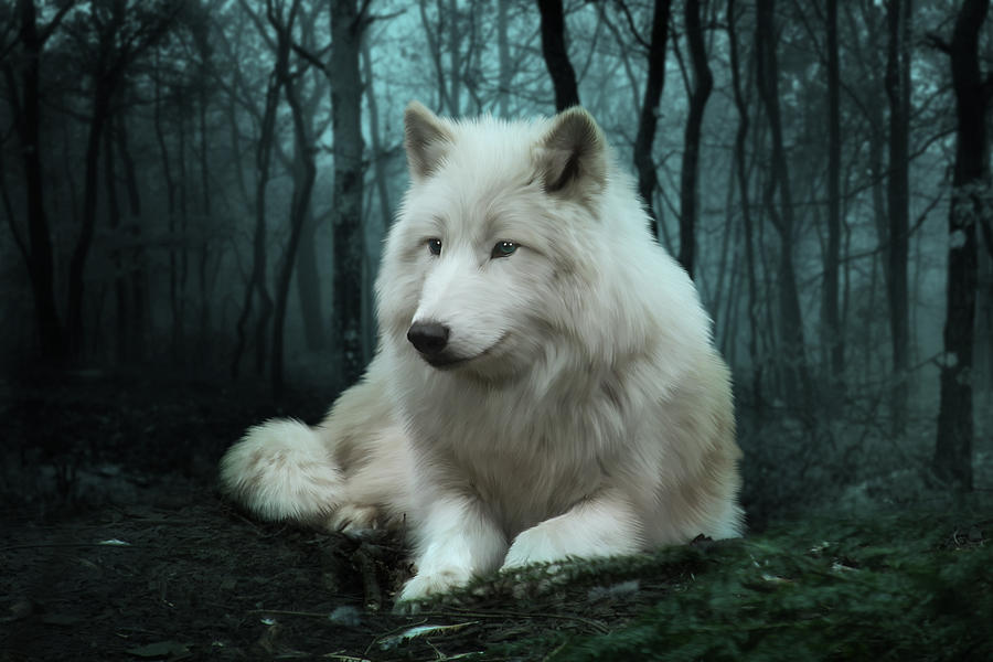 Arctic Digital Art - The White Wolf by Julie L Hoddinott