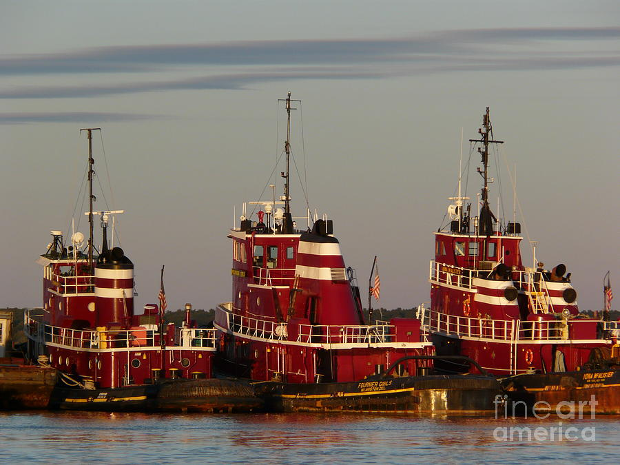 Maine Photograph - Three Tugs by Christine Stack
