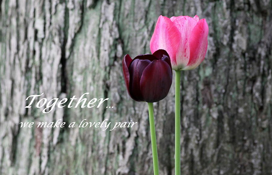 Card Photograph - Together by Deborah  Crew-Johnson