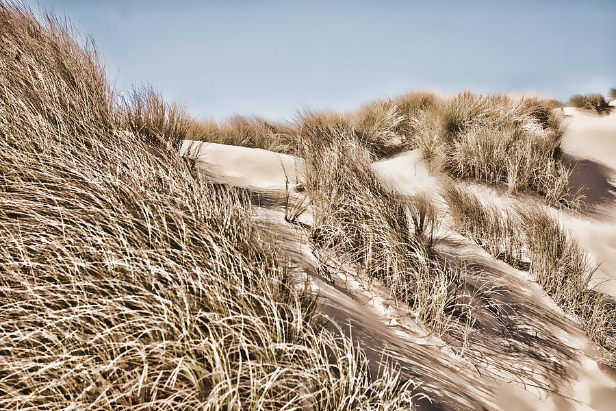 Landscape Photograph - Tranquility by Bonnie Bruno