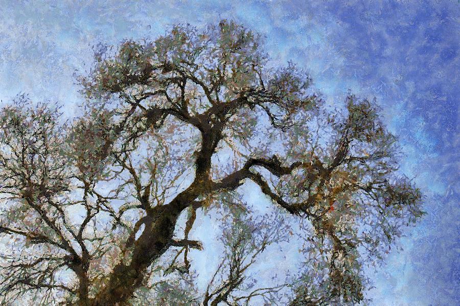 Tree Painting - Tree by Algimantas Gavenauskas