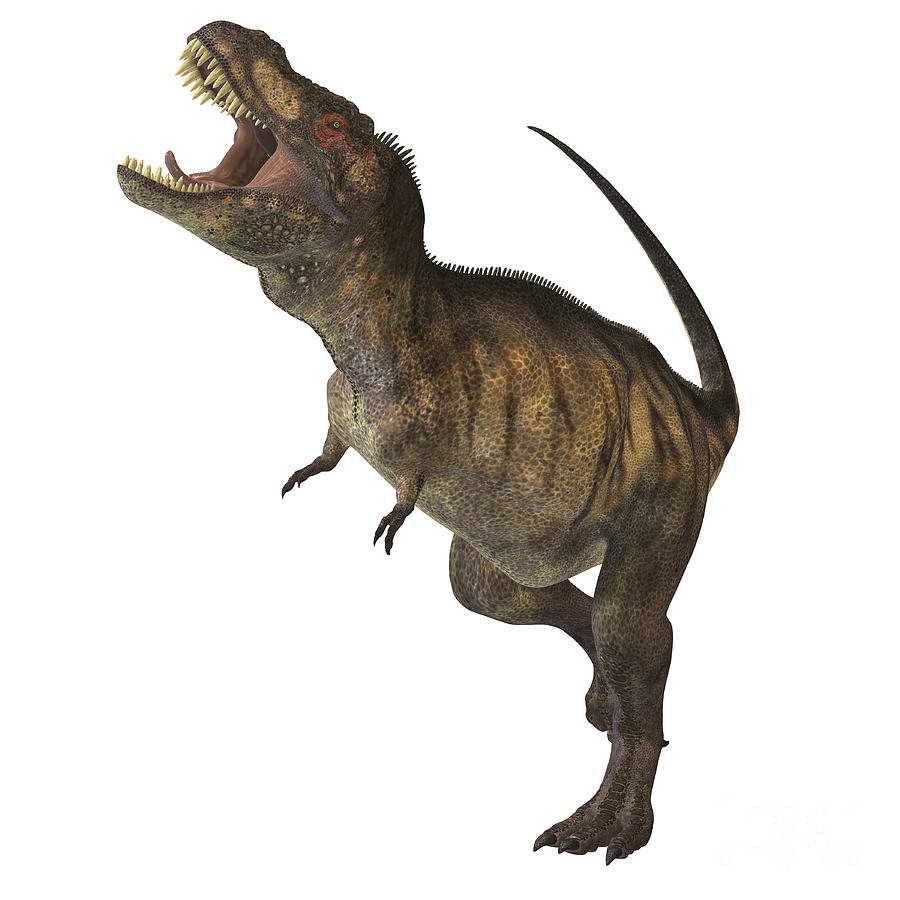 Dinosaur Digital Art - Tyrannosaurus Rex by Corey Ford