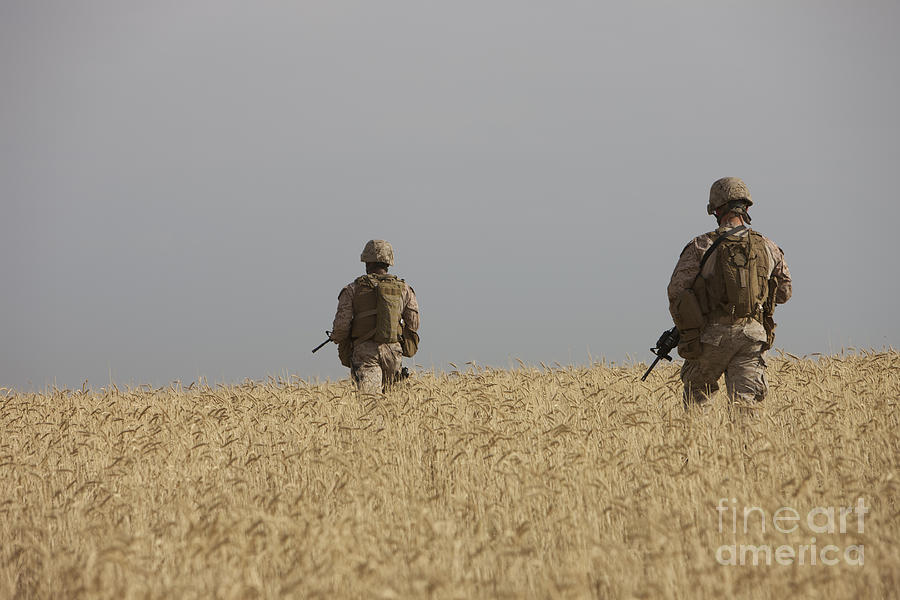 Field Photograph - U.s. Marines Patrol A Wadi Near Kunduz by Terry Moore