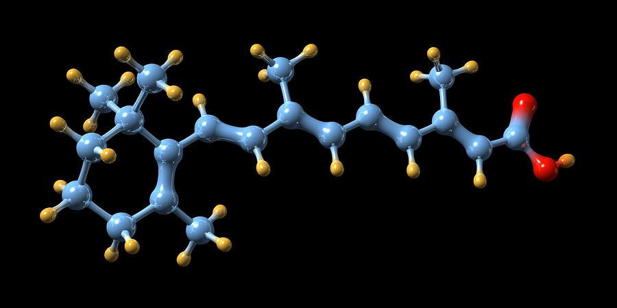 Retinoic Acid Photograph - Vitamin A (retinoic Acid) Molecule by Dr Mark J. Winter