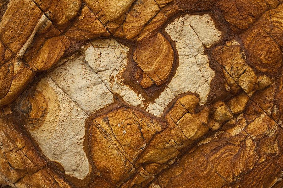 Volcanic Rock, Onawe, Banks Peninsula Photograph by Colin Monteath