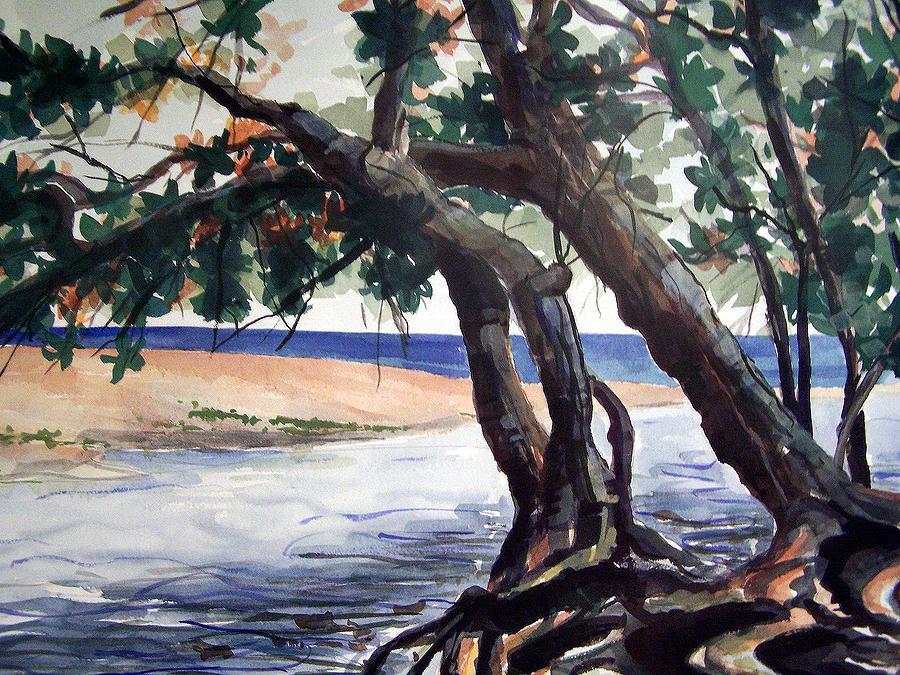 Wainiha Painting - Wainiha by Jon Shepodd