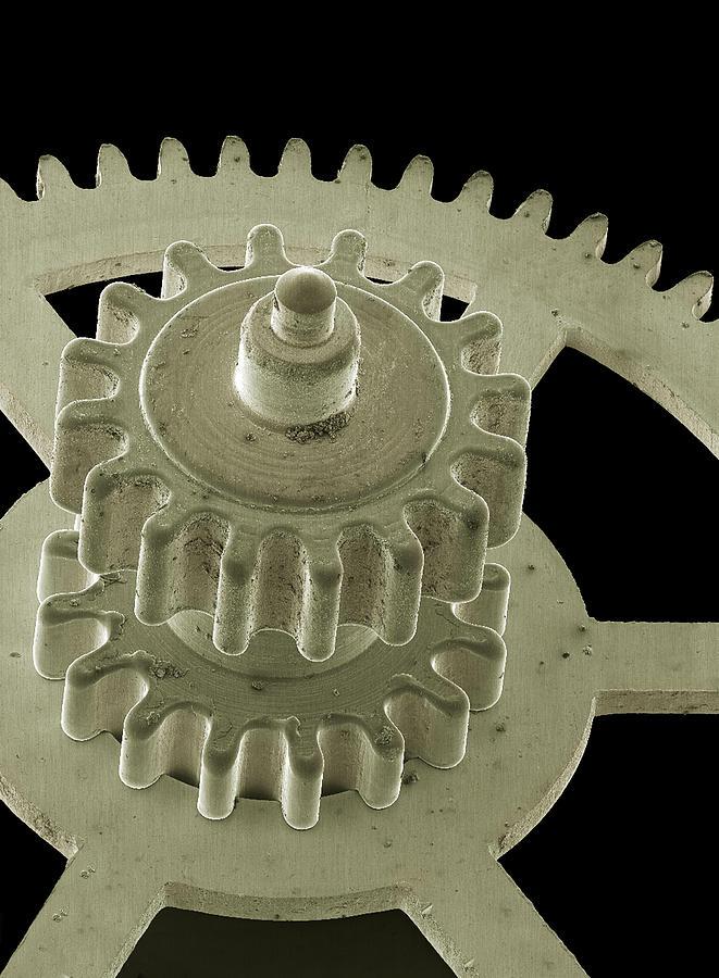 Gog Photograph - Watch Gears, Sem by Steve Gschmeissner