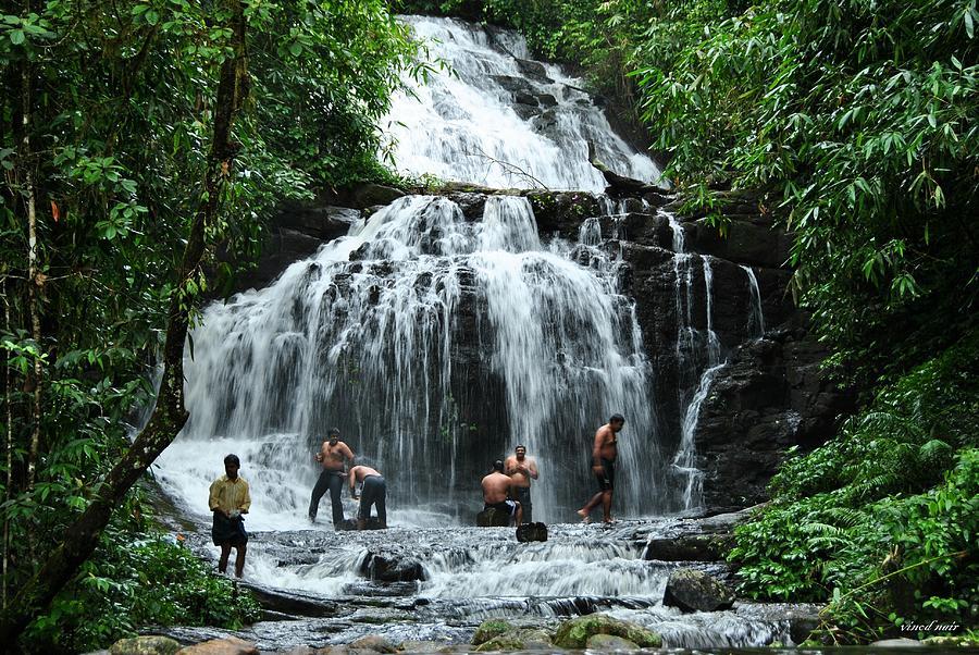 Photograph - Waterfall by Vinod Nair