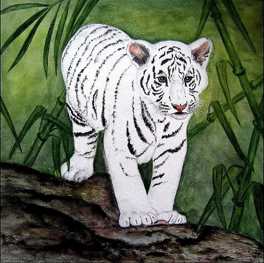 White Tiger Cub Painting by Sandra Maddox