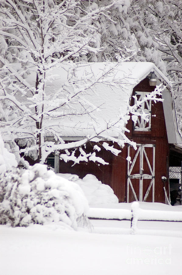 Barn Photograph - Winter Barn by Cheryl Cencich