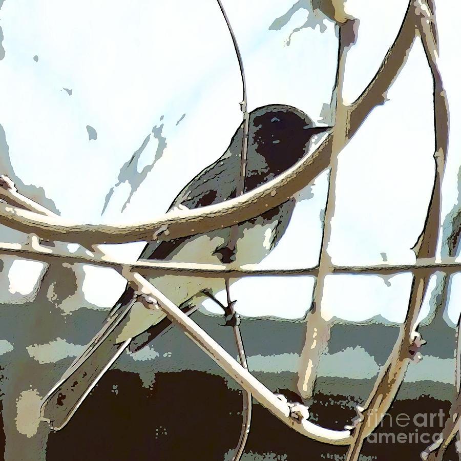 Finch Digital Art - Winter Bird by Artist and Photographer Laura Wrede