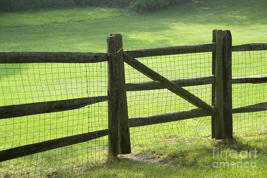 Fence Photograph - Wood Fence by Tony Cordoza