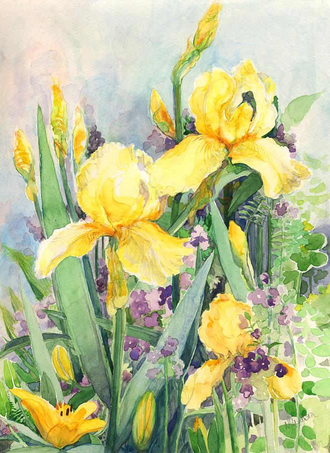 Yellow iris by Nancy Watson