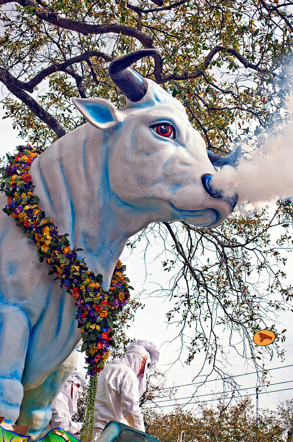 New Orleans Photograph - Rex Mardi Gras Parade by Steve Harrington