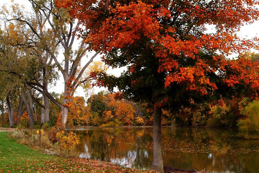 Autumn Photograph - 101011-242 by Mike Davis
