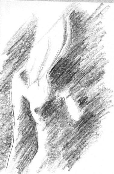 Woman Greeting Cards Drawing - Art by Marek Burbul