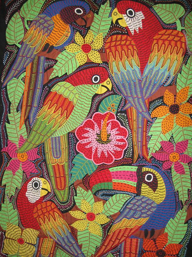 Kuna Photograph - Birds Of Panama by Kathy Othon