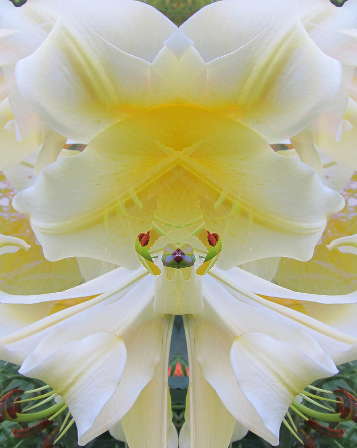 Color Blend Digital Art - Lily Fantasy by Michele Caporaso