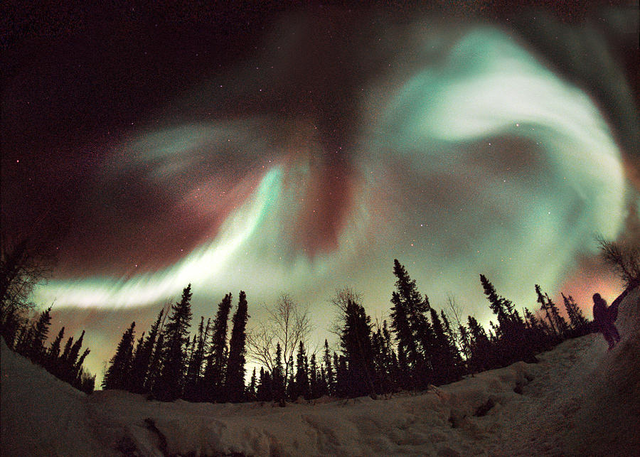 Nature Photograph - Aurora Borealis by Chris Madeley