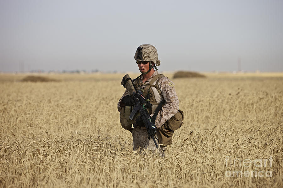 Wheat Photograph - U.s. Marine Patrols A Wadi Near Kunduz by Terry Moore
