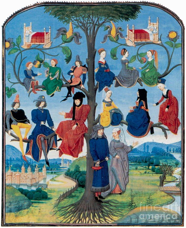Genealogy Photograph - 15th-century Family Tree by Photo Researchers