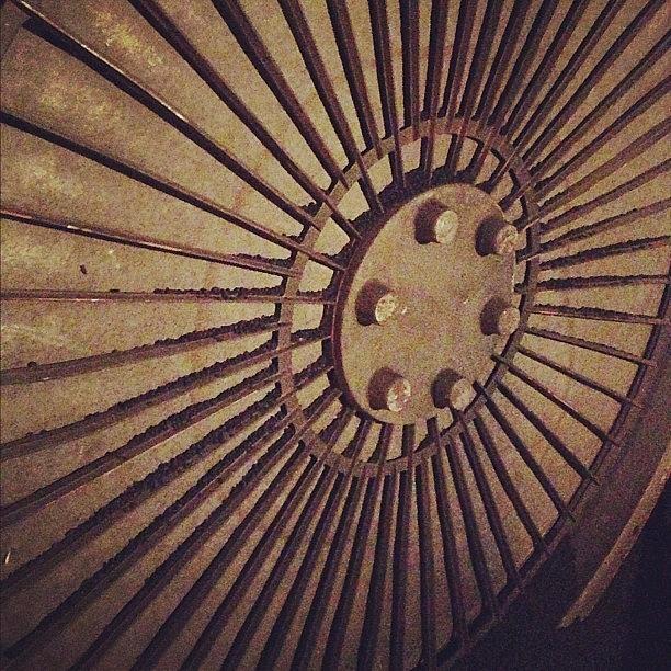 Instagram Photo Photograph by Jamie Emanuel