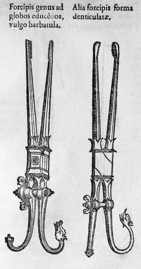 Forceps Photograph - 16th Century Forceps by Middle Temple Library