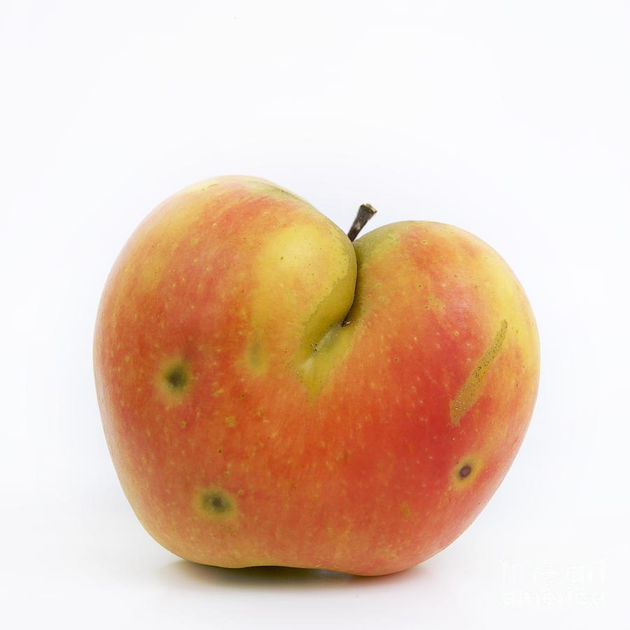 Still Photograph - Apple by Bernard Jaubert
