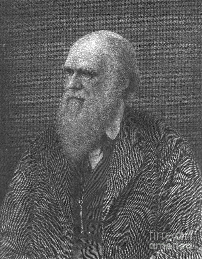 a creative letter to charles darwin an english scientist Darwin and the theory of evolution  charles darwin's natural selection letter   carolyn burdett is senior lecturer in english literature.