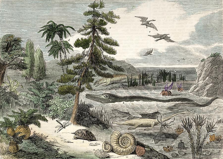 19th Century Photograph - 1833 Penny Magazine Extinct Animals Crop by Paul D Stewart