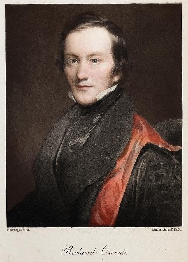 Anatomist Photograph - 1841 Richard Owen Coined dinosaur by Paul D Stewart