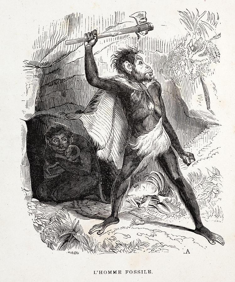Biface Photograph - 1861 Fossil Man By Boitard by Paul D Stewart