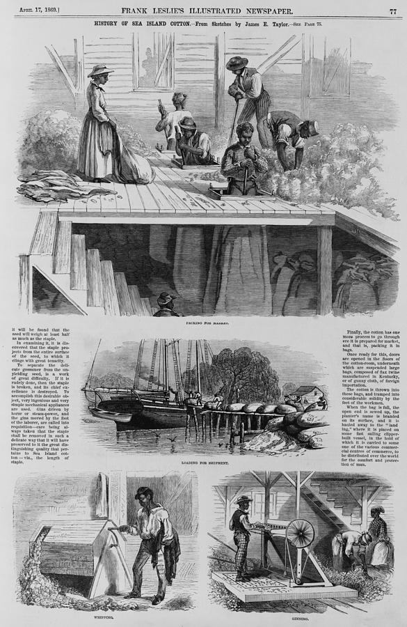 History Photograph - 1869 Illustration Show Ex-slaves, Now by Everett