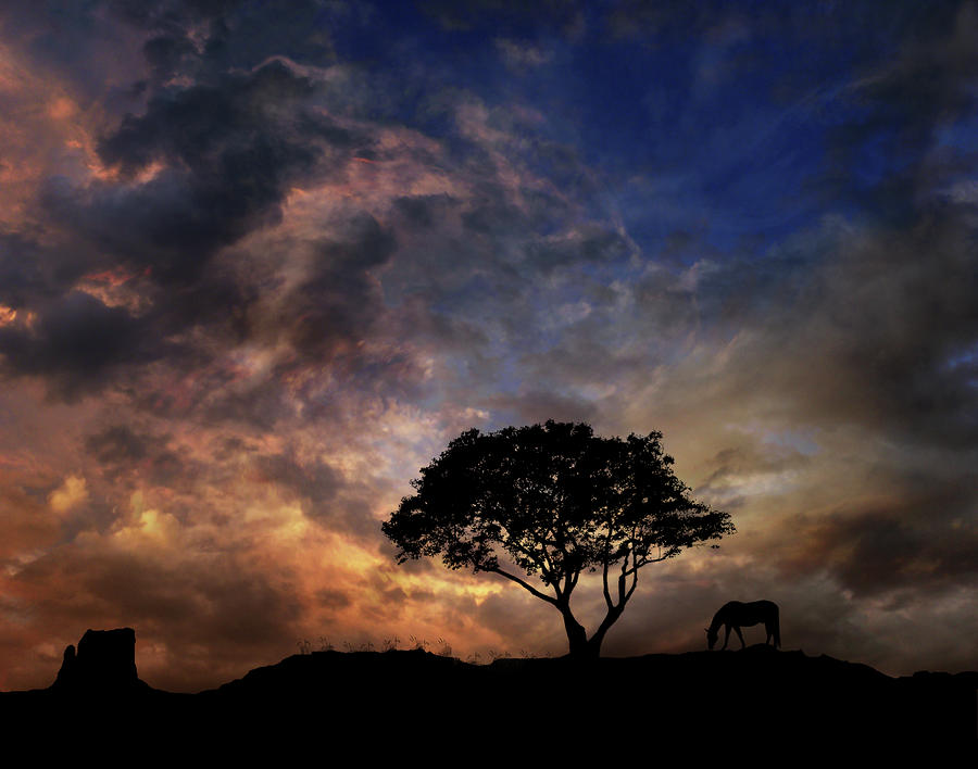 Trees Photograph - 1876 by Peter Holme III