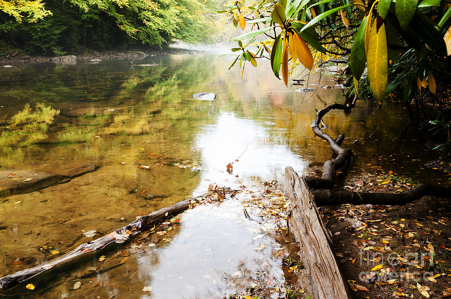 Monongahela National Forest Photograph - Fall Along Williams River by Thomas R Fletcher