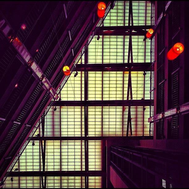 Newyork Photograph - Instagram Photo by Evan Kelman