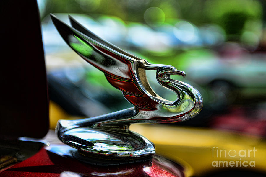 1934 Chevy Photograph - 1934 Chevrolet Flying Eagle Hood Ornament - 2 by Paul Ward