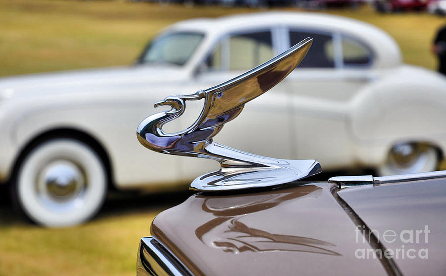 1934 Chevrolet Master Hood Ornament by Elizabeth Coats