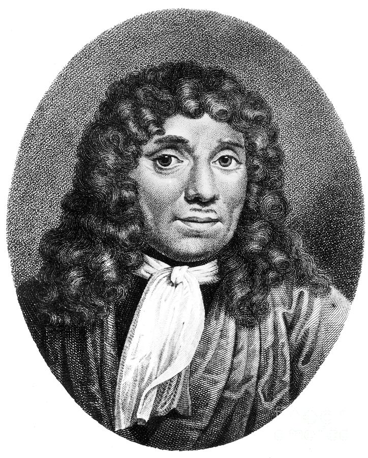 2 Anton Van Leeuwenhoek Granger likewise The Mission Fig Leaf Richard Ortolano likewise Jelly Schoolset furthermore Woodline Case For Iphone 6s 6 likewise Second Opium War 1860 Granger. on a bag phone